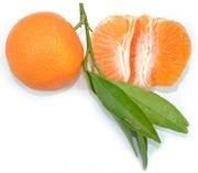 tangerine fruit monk fruit
